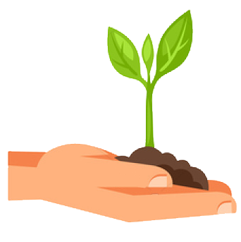 Hands holding out a seedling growing in soil